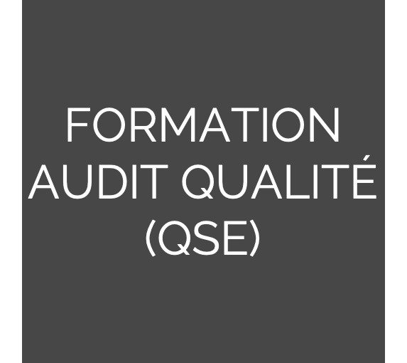 Formation à l'audit Qualité QSE