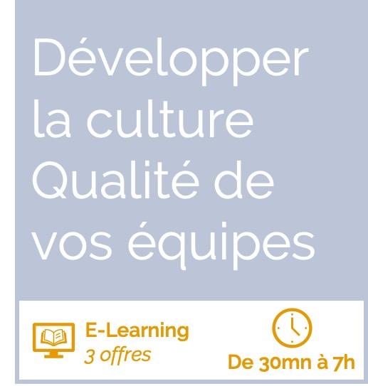 Formation E-Learning développer la culture Qualité de vos équipes