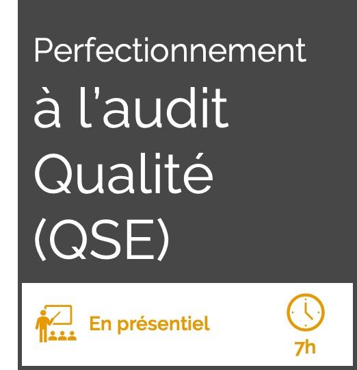 Formation perfectionnement à l'audit qualité QSE